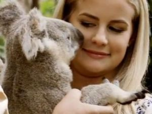 matildah koala