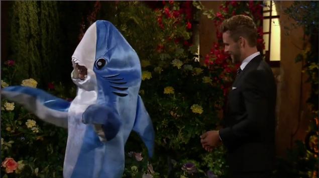 alexis-shark-suit